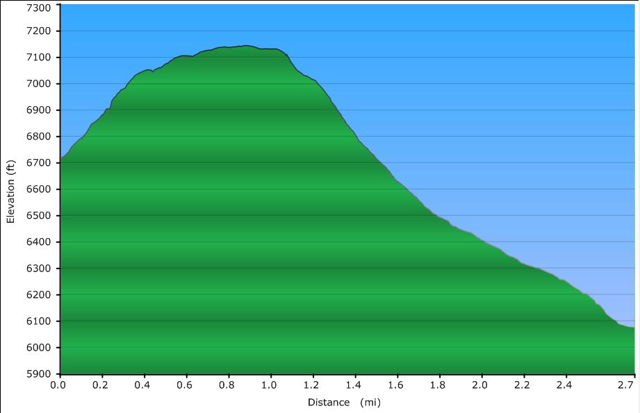 seep-elevation