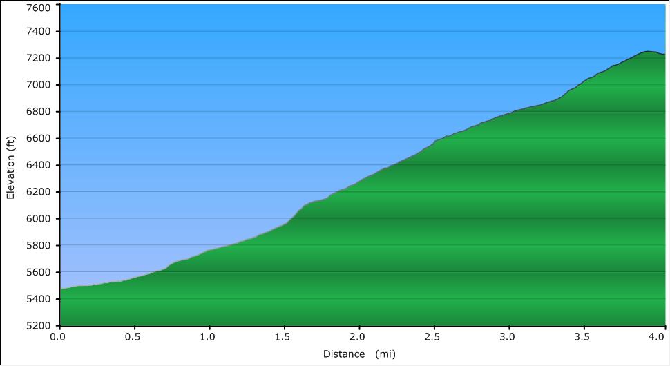 steel_elevation
